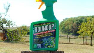 Un flacon de désherbant RounUp de la marque Monsanto. (ALAIN DELPEY / MAXPPP)