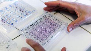 (Les premiers essais cliniques sur des patients souffrant de la moypathie de Duchenne se feront en 2015.(Illustration) © Maxppp)