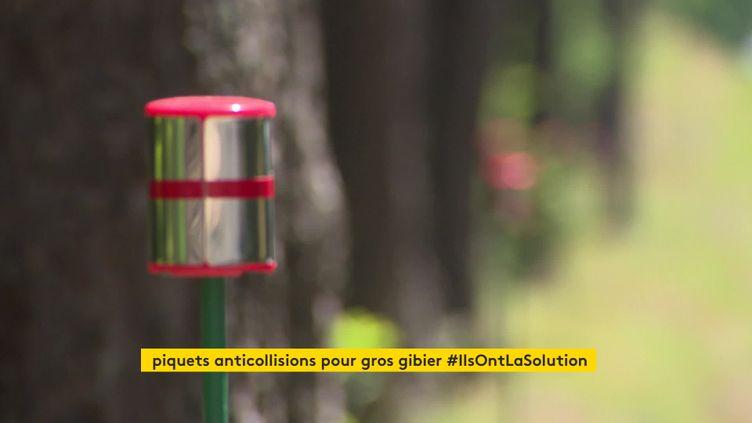 Des piquets cylindriques réflecteursde lumière ont été installés sur deux tronçons en Haute-Loire. (France 3 Auvergne)