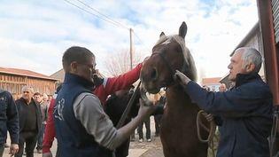 Le départ vers le Salon de l'agriculture (Paris) n'est pas de tout repos, comme peuvent en témoigner des éleveurs de chevaux comtois de Vercel (Doubs). (CAPTURE D'ÉCRAN FRANCE 3)