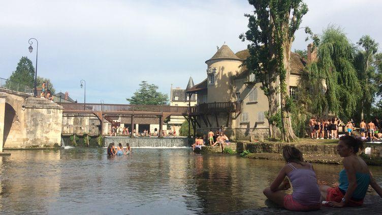 Les habitants de Moret-sur-Loing se réfugient au bord de la rivière en période de canicule. (ARIANE GRIESSEL / RADIO FRANCE)