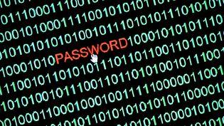 Photo d'ilustration sur la sécurité informatique prise le 8 janvier 2019 à Osterode (Allemagne). (FRANK MAY / PICTURE ALLIANCE / AFP)
