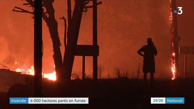 Après la Grèce, la Turquie, et l'Algérie, c'est au tour du sud de la France d'être en proie aux flammes. Un feu de forêt particulièrement violent s'est déclaré dans le Var dans l'arrière-pays de Saint-Tropez. Des milliers de personnes ont dû être évacuées. 900 pompiers sont mobilisés.