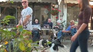 Après l'annonce de la démission de Theresa May, France 3 s'est rendue auprès de Britanniques expatriés en Dordogne (France). (FRANCE 3)