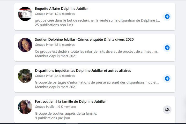 Capture d'écran de certains groupes Facebook créés autour de la disparition de Delphine Jubillar. (FACEBOOK)