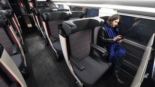 TGV entre Paris et Bordeaux, le 11 décembre 2016. (MEHDI FEDOUACH / AFP)