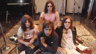 Iggy Pop & The Stooges  (Ed Caraeff)