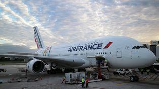 Un avion d'Air France à l'aéroport de Cancun (Mexique), le 27 novembre 2013. (ELIZABETH RUIZ / AFP)