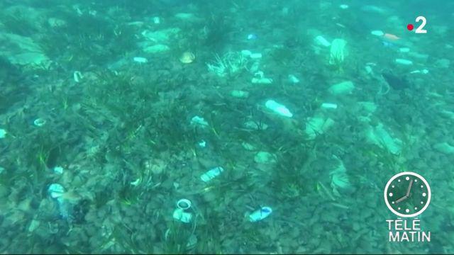 Pollution : la Méditerranée en grand danger