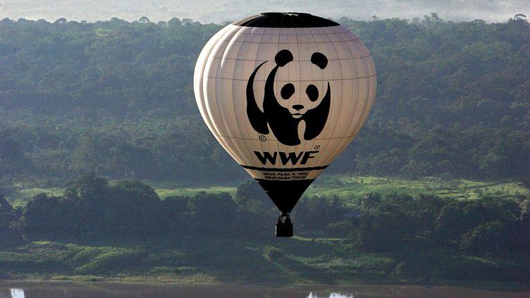 Un ballon dirigeable du WWF survole l'Amazonie pour constater l'ampleur de la déforestation, le 28 décembre 2006 (Illustration). (EVARISTO SA / AFP)