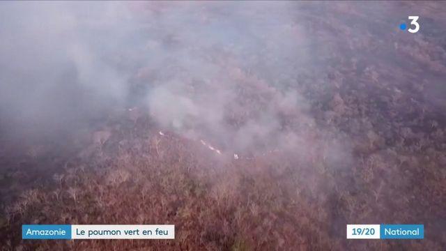 Amazonie : le poumon vert en feu