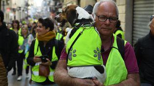 Un homme et son chien vêtus d'un gilet jaune manifestent à Bordeaux (Gironde), le 2 mars 2019. (MEHDI FEDOUACH / AFP)