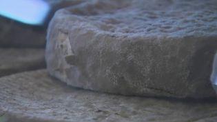 Près d'une cinquantaine de fromages arborent le label d'appellation d'origine protégée (AOP). Parmi eux, le Saint-Nectaire. Est-ce un gage de qualité pour autant ? (CAPTURE ECRAN FRANCE 2)
