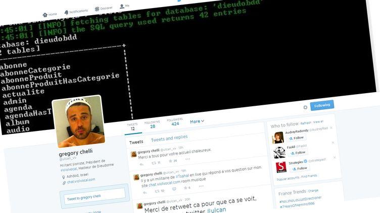 Le compte Twitter du hacker franco-israélien Ulcan, visé par une plainte du directeur de la rédaction de Rue89. (ULCAN_VV / TWITTER)