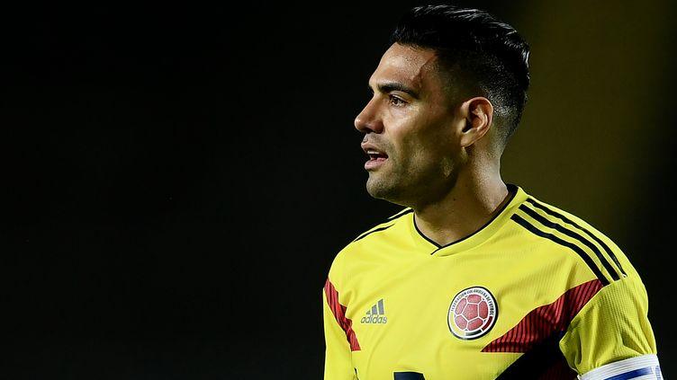 Radamel Falcao prêt à rugir pour sa première Coupe du monde (MARCO BERTORELLO / AFP)