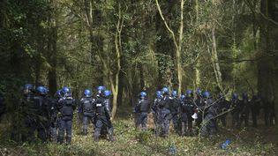 Des gendarles anti-émeutes sur la ZAD de Notre-Dame-des-Landes (Loire-Atlantique), le 15 avril 2018. (DAMIEN MEYER / AFP)