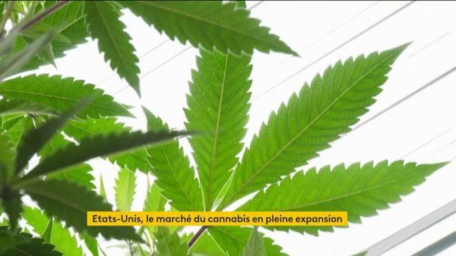 États-Unis : le marché du cannabis se libéralise