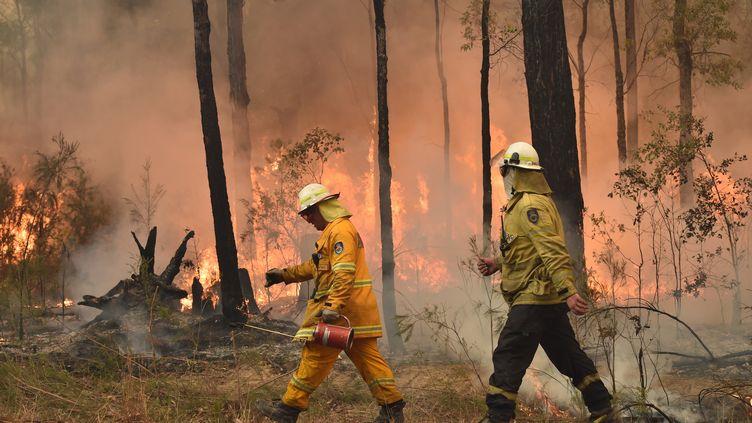 Des pompiers près deJerrawangala, en Australie, essayent de contenir l'incendie qui a ravagé le pays en janvier. (PETER PARKS / AFP)