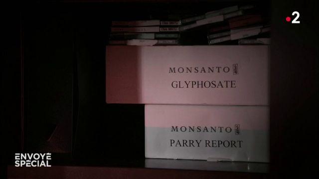 Envoyé spécial. Monsanto, la fabrique du doute