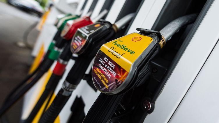 Une pompe à essence en Allemagne (CHRISTOPHE GATEAU / DPA)