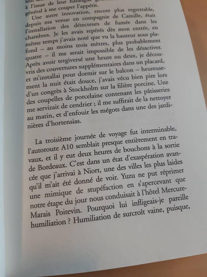 """Capture d'écran de """"Sérotonine"""", le roman del'écrivain Michel Houellebecq, sorti le 4 janvier 2019. (RAPHAEL GODET / FRANCEINFO)"""