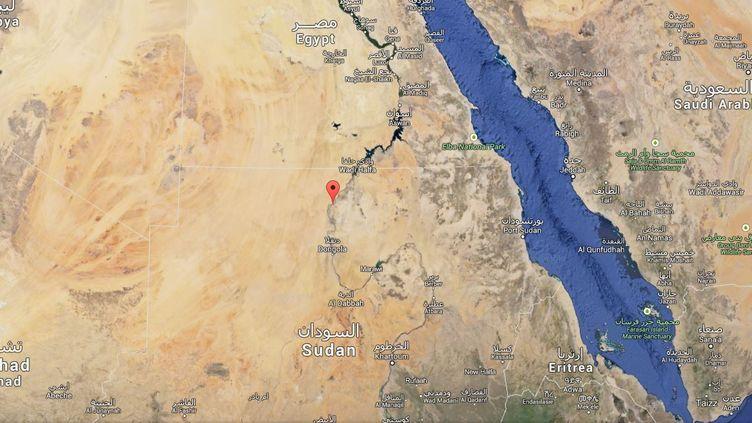 Le squelette en question a été découvert sur le site de Amara West, à 750 km au sud de la capitale soudanaise Khartoum. ( GOOGLE MAPS / FRANCETV INFO )