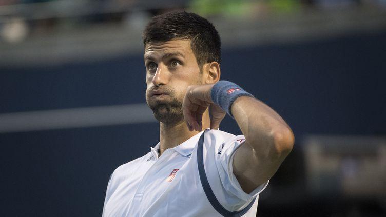 Novak Djokovic (KEVIN VAN PAASSEN / AFP)