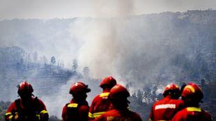 Des pompiers luttent contre des feux de forêt le 27 juillet 2017 àCastelo Branco (Portugal). (PATRICIA DE MELO MOREIRA / AFP)