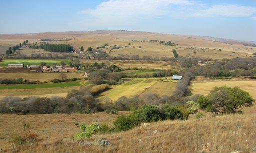 La vallée de la Blauawbankspruit, où se trouve la grotte de Sterkfontein. Le creusement de cette vallée a conditionné toute la formation du paysage de ce secteur. Néanmoins, elle a peu évolué depuis l'époque ou les australopithèques la peuplaient. Certains de ces paysages n'ont pas changé depuis leur époque. (Laurent Bruxelles - Inrap)