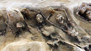 Certains des squelettes retrouvés, alignés dans les fosses, ont les mains attachées par des liens en fer.  (ARIS MESSINIS / GREEK CULTURE MINISTRY / AFP)