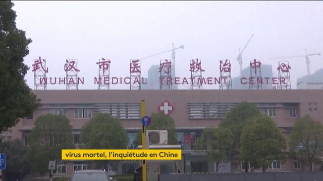 Chine : un virus mortel similaire au Sras a fait son apparition