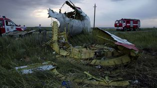 Un morceau de moteur du Boeing 777 abattu au-dessus de l'Ukraine, près du village de Hrabove, le 17 juillet 2014. (DMITRY LOVETSKY / AP / SIPA)
