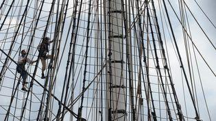Les fêtes maritimes de Brest (Finistère) ont ouvert leurs portes, mercredi 13 juillet 2016. (FRED TANNEAU / AFP)