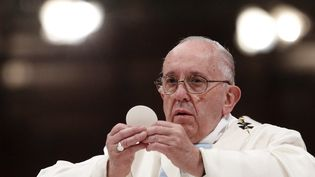 Le pape François en janvier 2016 (ISABELLA BONOTTO / MAXPPP)