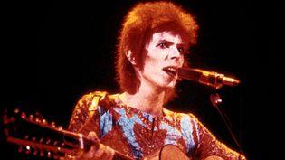 David Bowie en Ziggy Stardust en 1973. Le biopic portera sur la tournée américaine du chanteur en 1971. (MAINMAN / BEWLAY BROS / AFP)