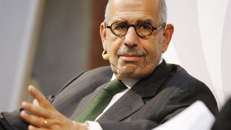 L'opposant égyptien, prix Nobel de la paix, Mohamed ElBaradei, le 25 janvier 2011, à Vienne. (Dieter Nagl - AFP)