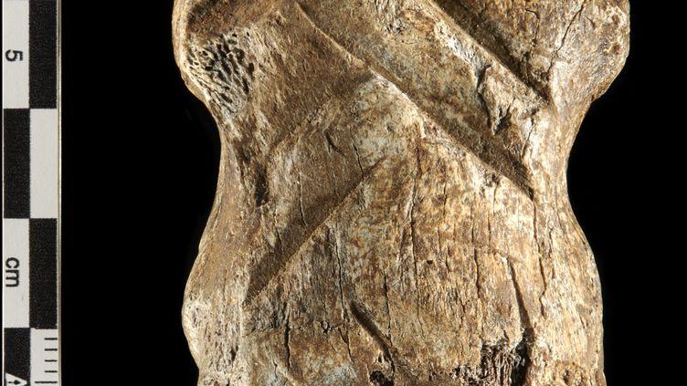 Unos de cerf géant gravé par les Néandertaliens,retrouvédans le nord de l'Allemagne. (VOLKER MINKUS / NLD)