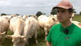 Un éleveur entouré de ses vaches. (FRANCE 3)