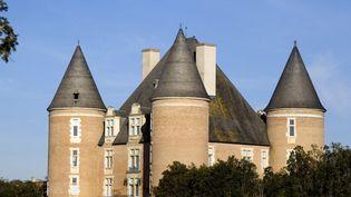Le château de Saint-Elix (Haute-Garonne) sera vendu aux enchères le 19 avril 2018. (PHILIPPE ROY / AFP)