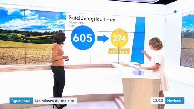 Suicides chez les agriculteurs : des chiffres qui font froid dans le dos
