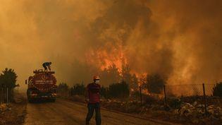 Un homme sur une route dans le village turc de Sirtkoy dévastépar les flammes, le 1er août 2021 (AP / SIPA)