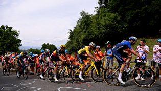 Les coureurs du 108e Tour de France abordent les premières montées avec des gros pourcentages. (ANNE-CHRISTINE POUJOULAT / AFP)