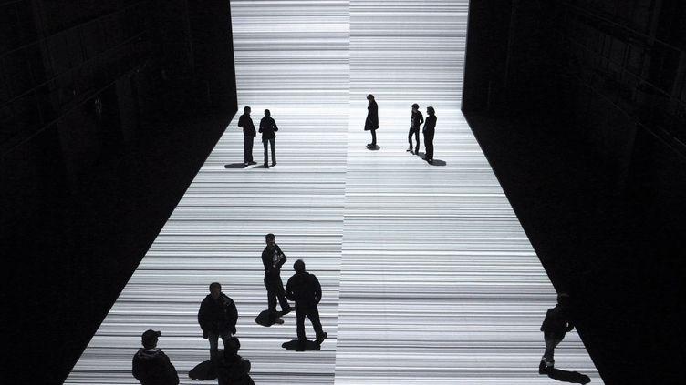 Test pattern :de gigantesques codes barres projetés sur le sol et les murs sur lesquels les visiteurs du musée des Confluences pourront déambuler.  (Ikeda)