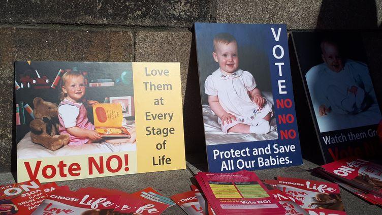 Les militants anti-avortement continuent leurs actions à la veille du scrutin sur la légalisation de l'IVG prévu le vendredi 25 mai. (GAELE JOLY / RADIO FRANCE)