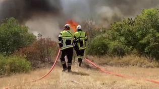 Incendies : le vent, l'ennemi des pompiers dans le Var (France 2)
