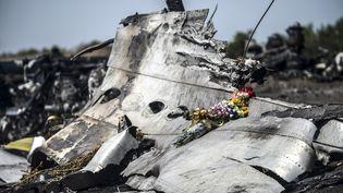 Des débris du vol MH17, photographiés le 26 juillet 2014 à Grabove (Ukraine). (BULENT KILIC / AFP)