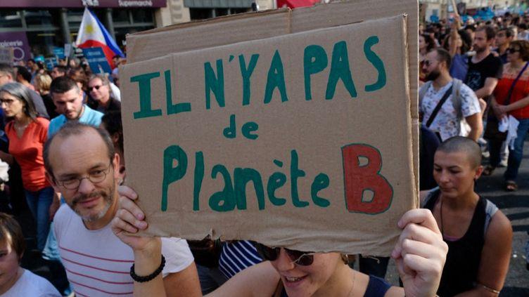 Marche pour alerter sur l'urgence climatique, le 13 octobre 2018 à Paris (NATHANAEL CHARBONNIER / FRANCE-INFO)