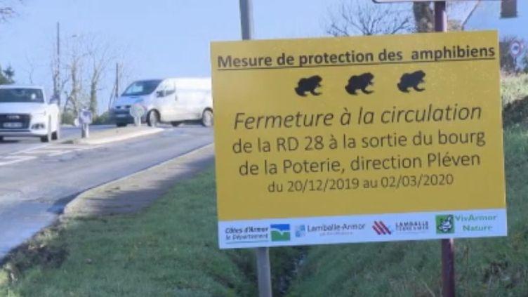 Dans les Côtes-d'Armor, une route départementale est fermée à la circulation pendant près de trois mois pour permettre aux grenouilles de la traverser. Une mesure qui devrait sauver plusieurs centaines de batraciens. (FRANCE 2)