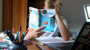 Un bachelier révisant pour le baccalauréat (illustration). (VANESSA MEYER / MAXPPP)
