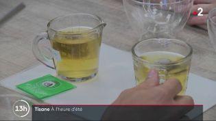 C'est une boisson qui en France fait désormais fureur en été. Longtemps infusée à froid, la tisane est de plus en plus souvent proposée dans les bars et cafés. Voici les coulisses de sa fabrication. (France 2)